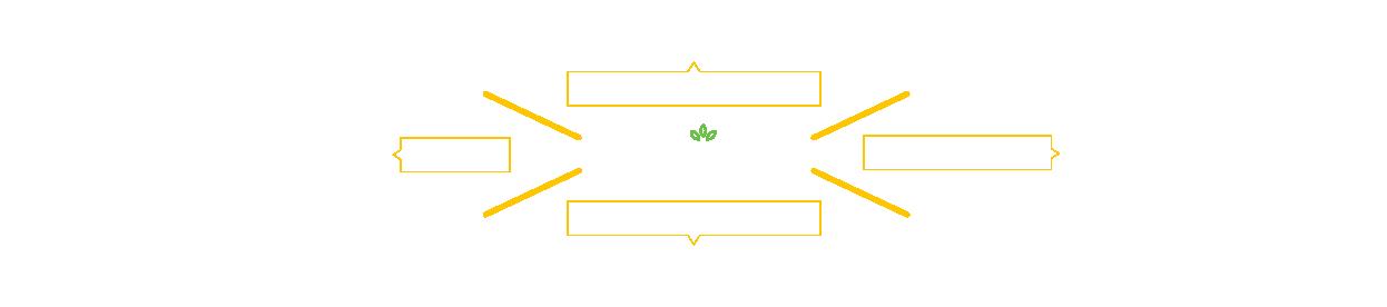MSP-Infographic